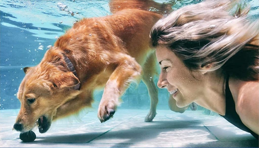 woman and the dog under the water