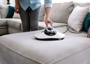 using vacuum for bed bugs