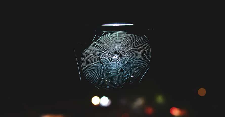 Cobweb under the lantern