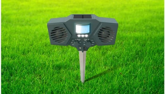 Hoont Solar Powered Motion