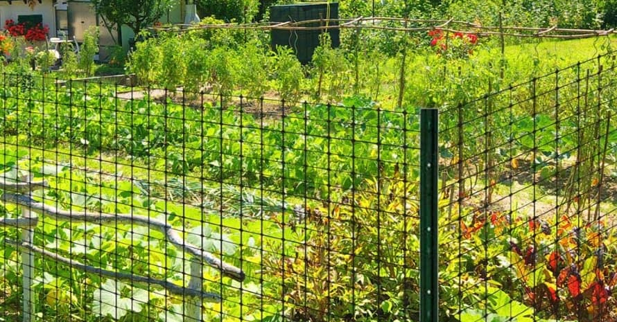 Jobe's Easy Gardener LG400171