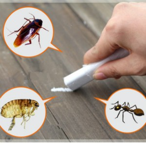 How To Get Rid Of Cockroaches 5 Best Roach Killers 2020