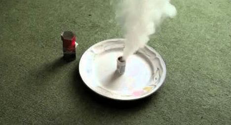flea fogger in action