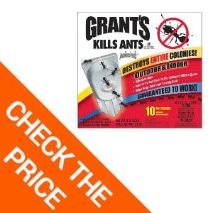Grants Indoor Ant Traps