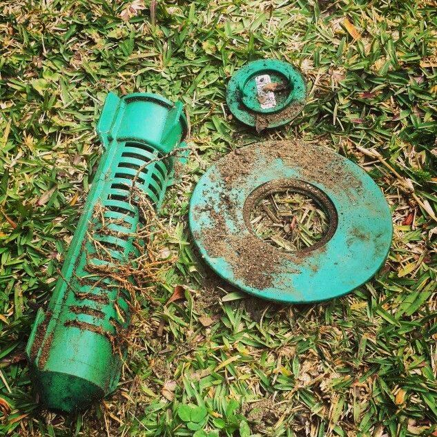 green-terminate-bait