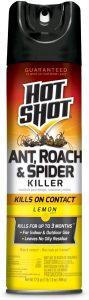hot shot ant killer spray
