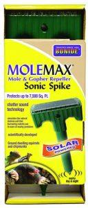 molemax outdoor chipmunk repeller