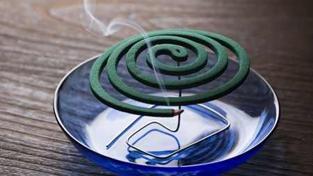 mosquito coil on a plate