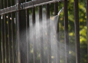 mosquito misting solutions