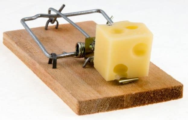 Which Mouse Trap is Better?
