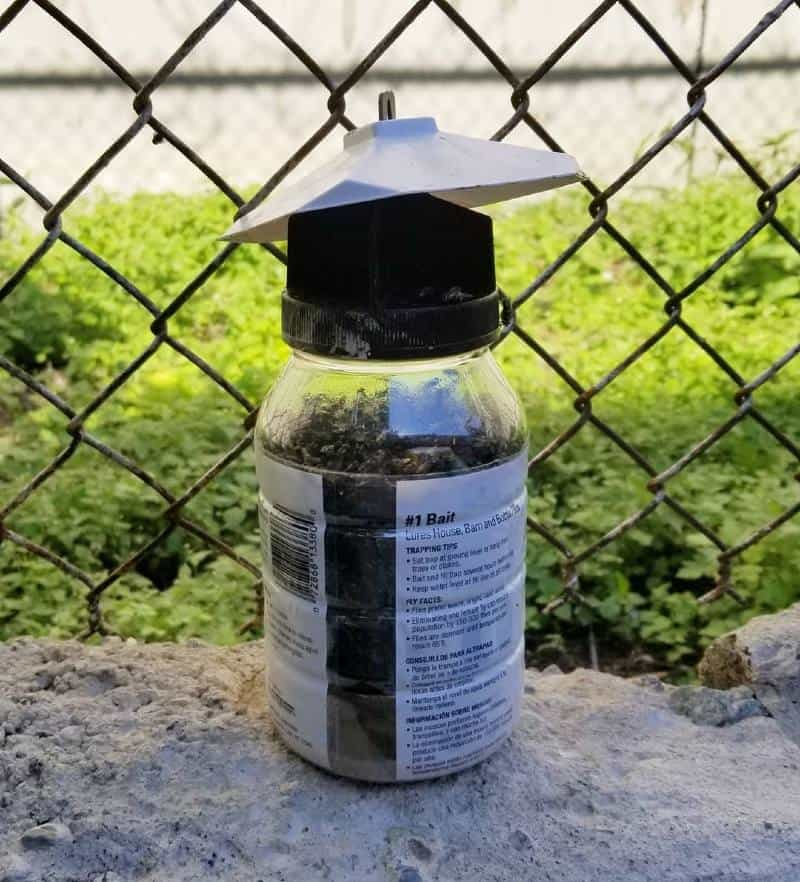outdoor fly trap