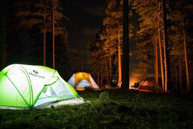 group of people camping in forest at nighttime