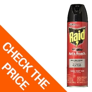 Raid Aerosol Spray Ant Roach Killer