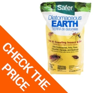 Safer Brand Diatomaceous Earth – Ant, Bed Bug, and Crawling Insect Killer