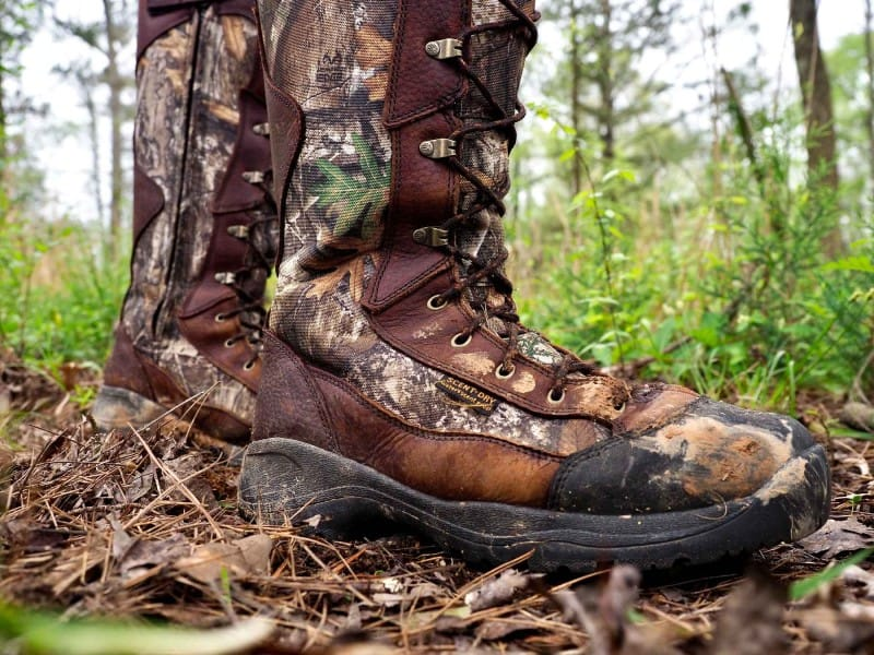 snake-boots-and-nature