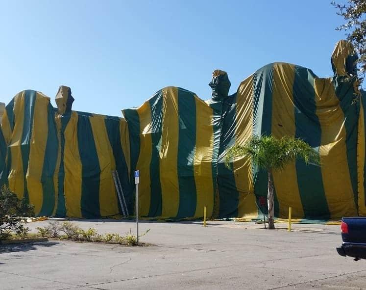 termite tenting
