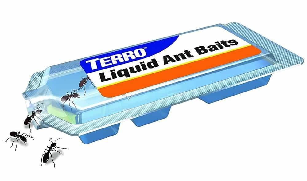 Terro Ant Bait Review Does It Work In 2020