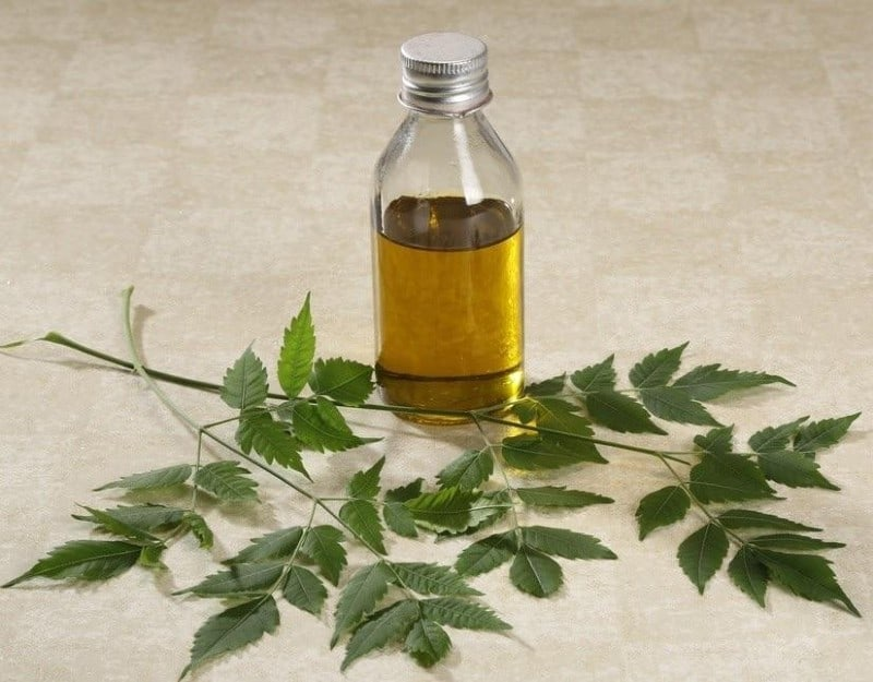 the-neem-oil