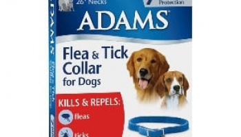Adams Flea and Tick Collar Review: How Effective Is This Very Affordable Treatment?