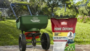 Best Flea Killers for Yard: A Comprehensive Review