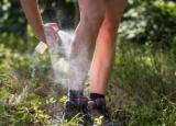 Homemade Mosquito Repellent: Most Popular Recipes