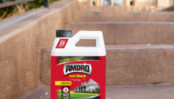Comprehensive Amdro Ant Bait Review: Is It Effective Enough?