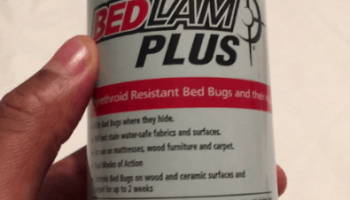 Best Bed Bug Bombs and Foggers: Detailed Guide