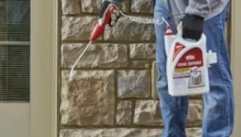 Best Roach Sprays in 2021: Expert Reviews