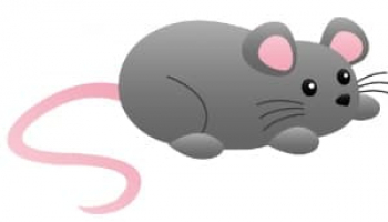 Comprehensive Fresh Cab Rodent Repellent Review: Is It Effective Enough?