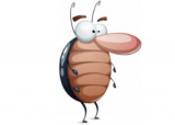 6 Best Roach Killers to Buy in 2021: Most Effective Roach Treatment Products Reviewed