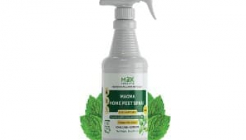 Best Pet Safe Ant Killer in 2021: Expert Reviews