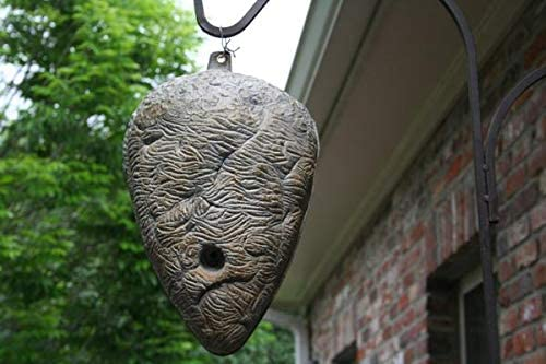 wasp deterrent hornet nest