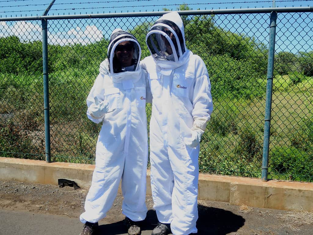 2 people wearing bee suits